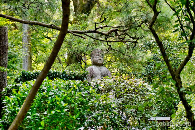 Ryoanji Temple-004