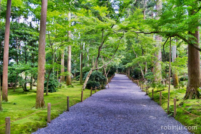 Ryoanji Temple-010