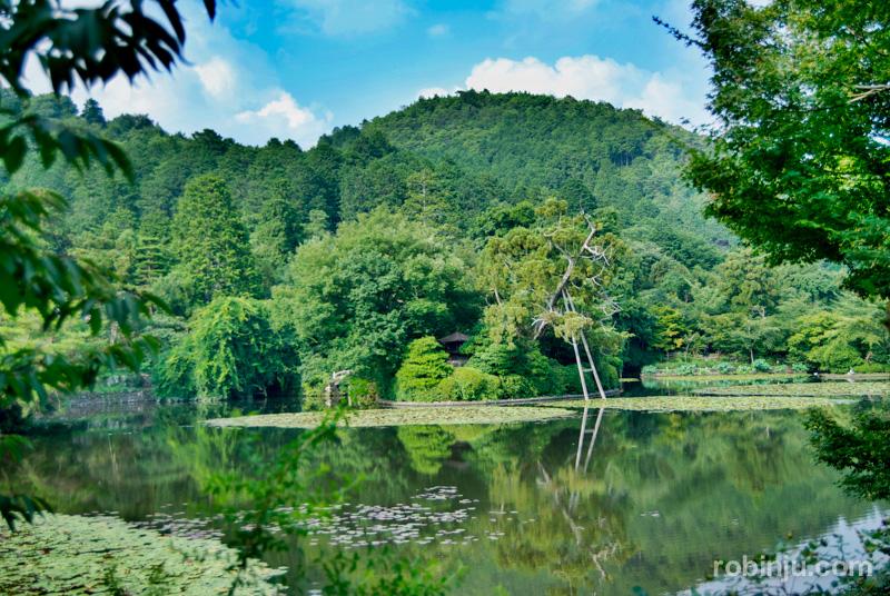 Ryoanji Temple-012