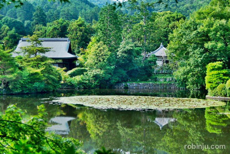Ryoanji Temple-013