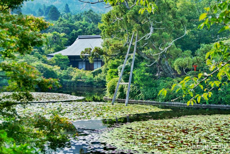 Ryoanji Temple-015