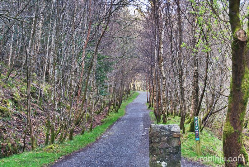 Glendalough-009