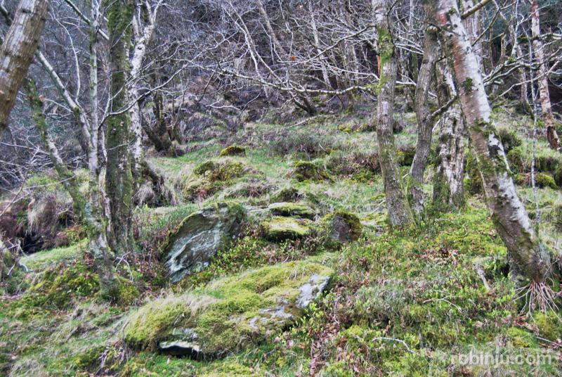 Glendalough-010