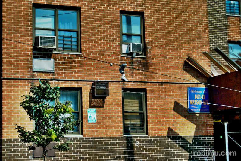 Bronx-020