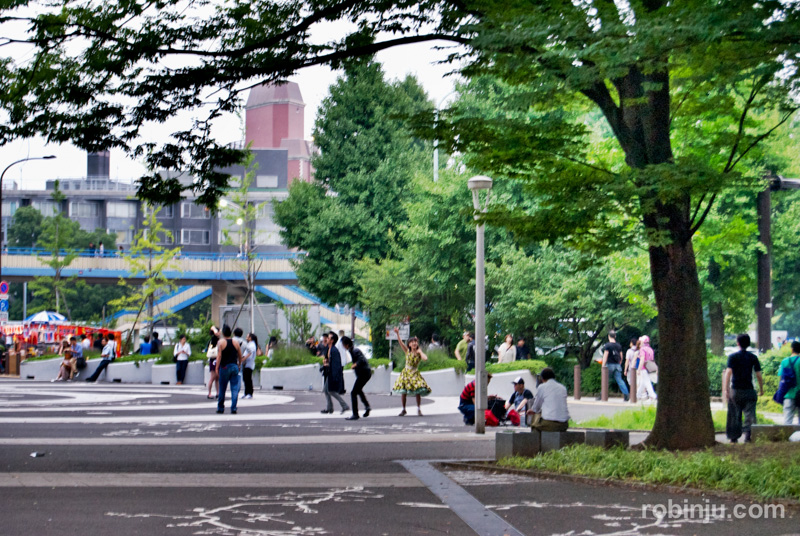 Yoyogi Park rock 01