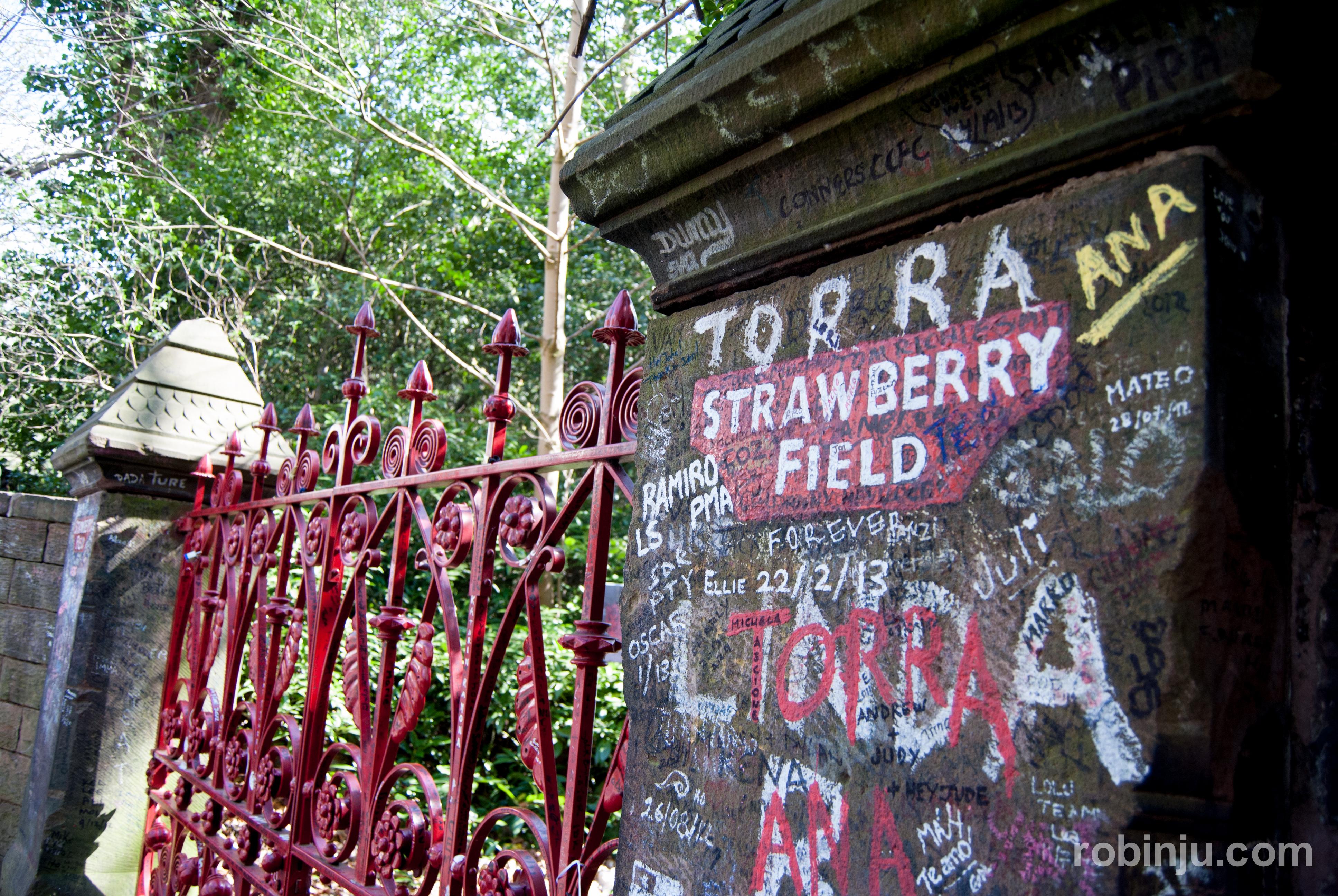 strawberry fields-004