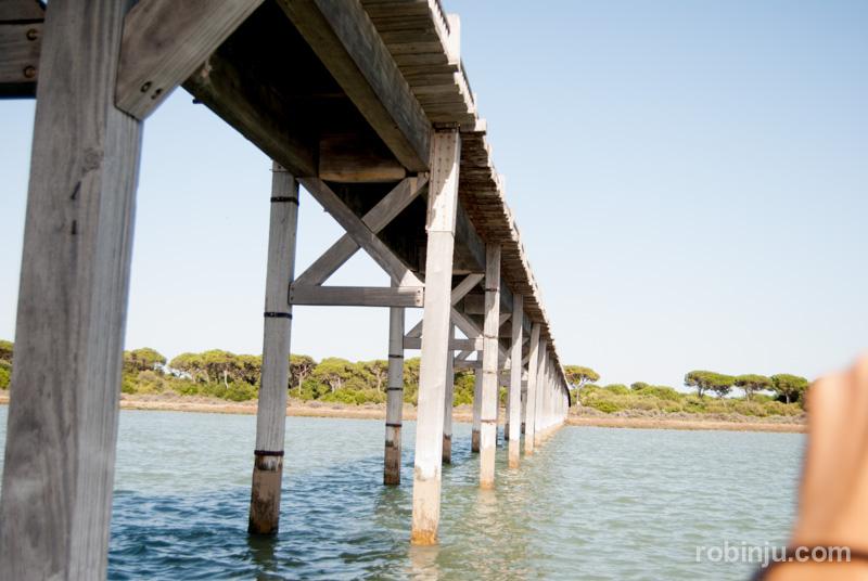 Bahia de Cadiz-028