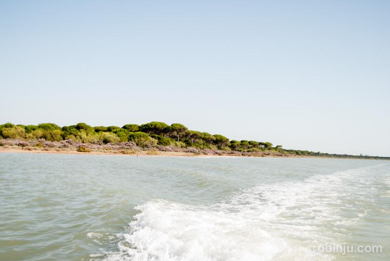Bahia de Cadiz-031