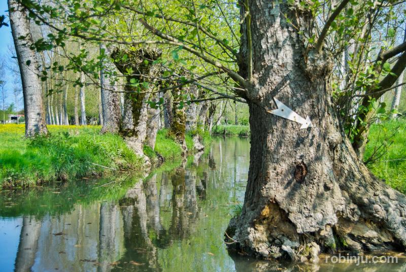 Marais Venecia Verde