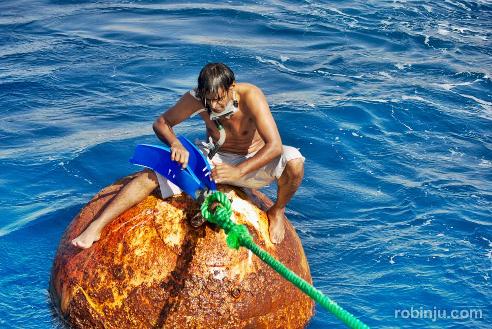 Snorkel en Aqaba, bucear en el mar rojo
