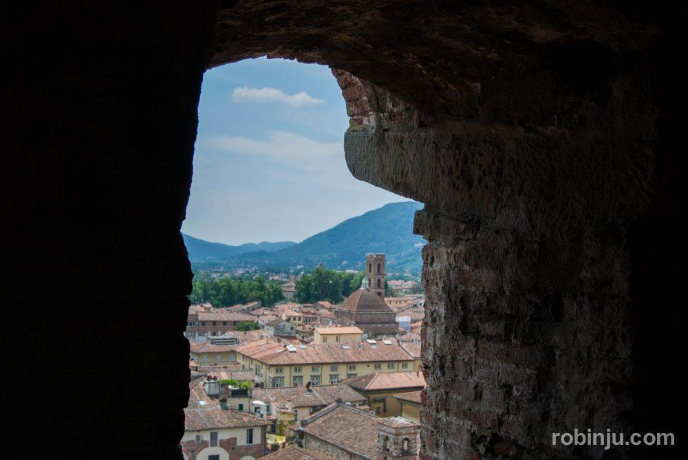 La Torre Guinigi de Lucca - Toscana- Italia-38