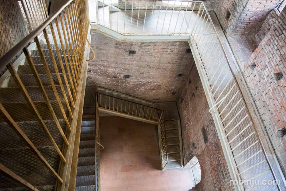La Torre Guinigi de Lucca - Toscana- Italia-39