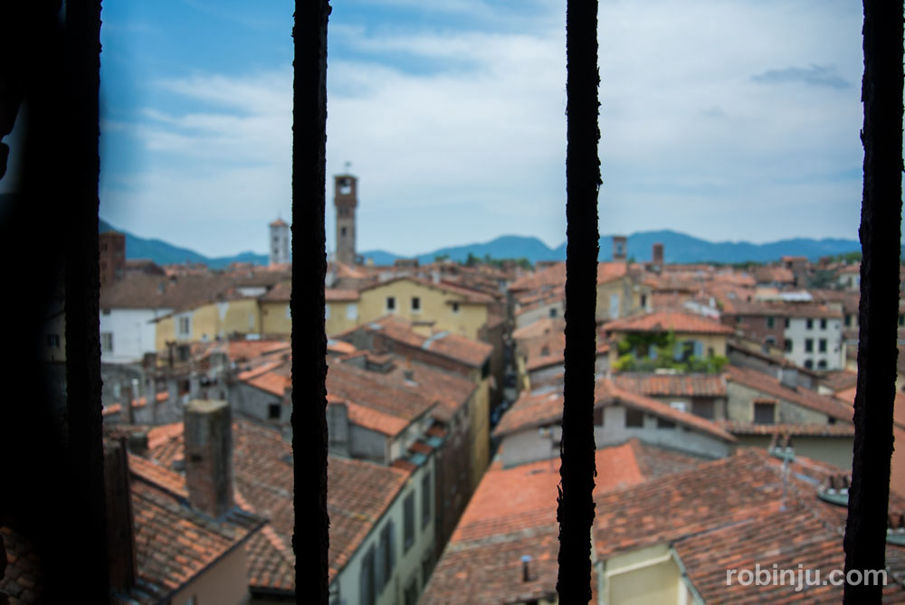 La Torre Guinigi de Lucca - Toscana- Italia-6