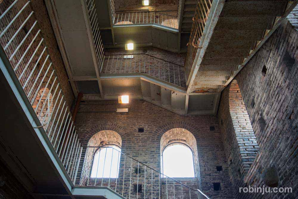 La Torre Guinigi de Lucca - Toscana- Italia-7