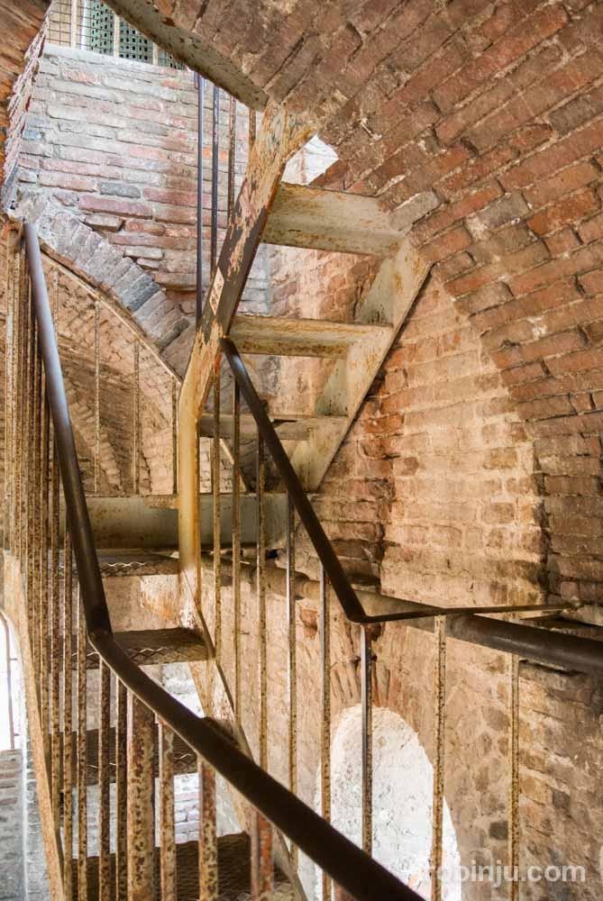 La Torre Guinigi de Lucca - Toscana- Italia-8
